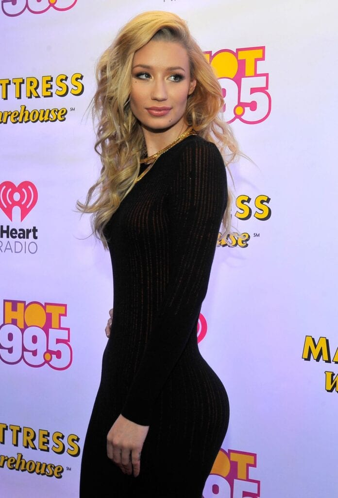 iggy-azalea-hot-99.5-s-jingle-ball-2014-in-washington-d.c._2