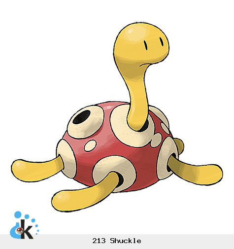 213 Shuckle